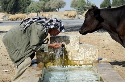 استنزاف المياه: بين أسطورة التصدير ومجتمع الاستهلاك