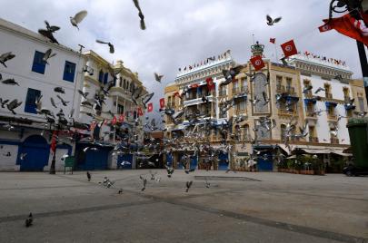 المثقف والثورة التونسية: في انتظار ثورة الفنان