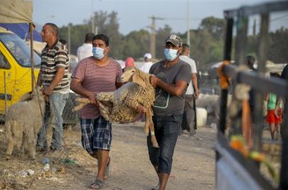 حملة تضامنية فرضتها كورونا.. تونسيون يتبرعون بثمن أضحية العيد نبلًا وتصدّقًا