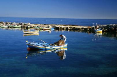 قالوا إن وزارة الفلاحة تحمي الصيد العشوائي: هجرة جماعية لبحارة الشابة