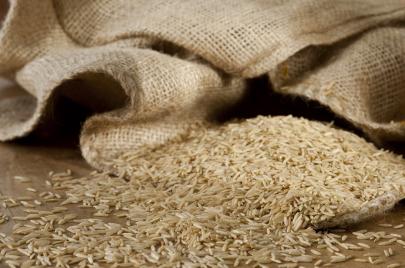 ثبوت احتواء 600 طنًا من الأرز الموّرد على نسبة عالية من الأفلاتوكسين