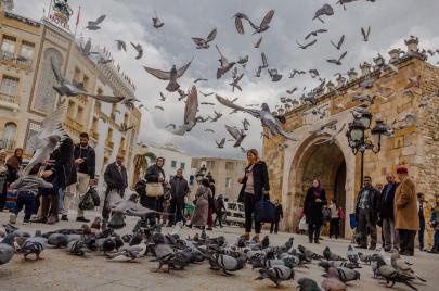أبواب تونس العتيقة.. حكايات التاريخ والحضارة