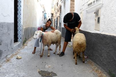 5 من أشهر عادات الاحتفال بعيد الأضحى في تونس